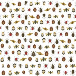 coleopter wallpaper white